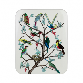 Fornasetti - Tray Uccelli colour - tác
